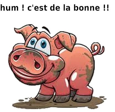 g cochon